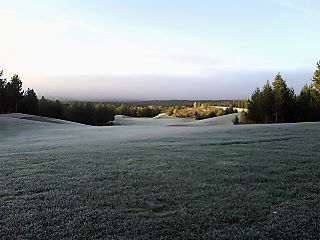 Blogg_frost_20080924