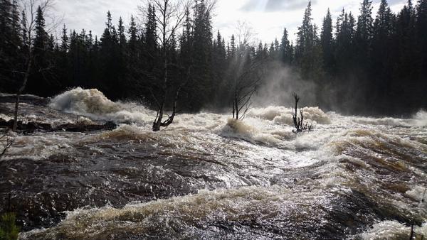 Sognforsen-20170519